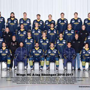 A-laget 2016/2017