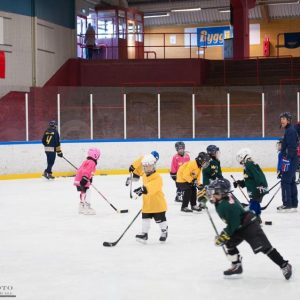 Wings Hockeyskola 5/11-2016