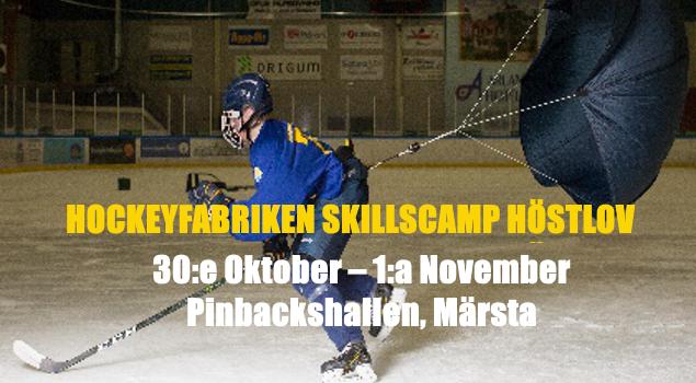 Hostcamp_laget2