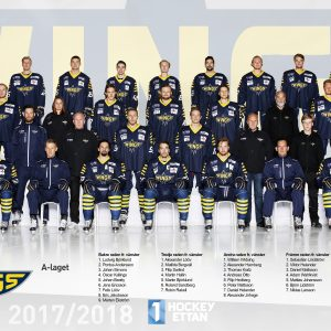 Wings A-lag 2017/2018